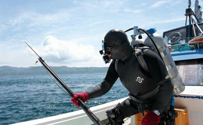 漁師がやっているドライブイン潮騒 水中銃漁師が営む海鮮料理店